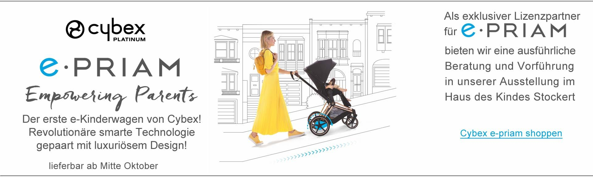 Cybex Platinum e-priam